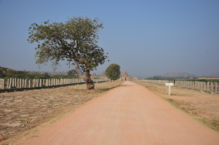 DSC_3455 Way to Vitthala temple