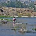 A local man fishing on Tungabhadra near Purandara Mandapa