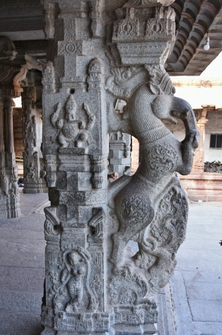 Horse or Yali pillars made out of black stone - Ranga Mandapa