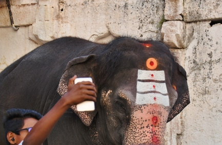 Selfie with Lakshmi