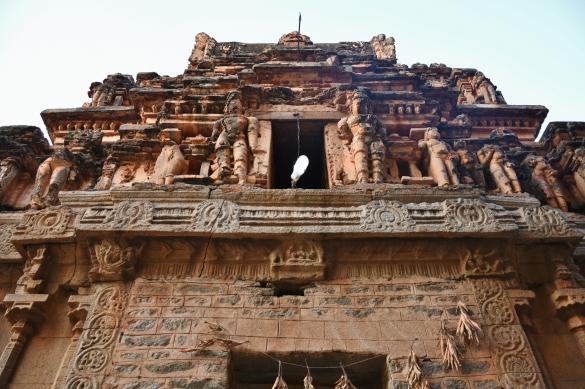 East Gopura of Raghunathaswamy temple.
