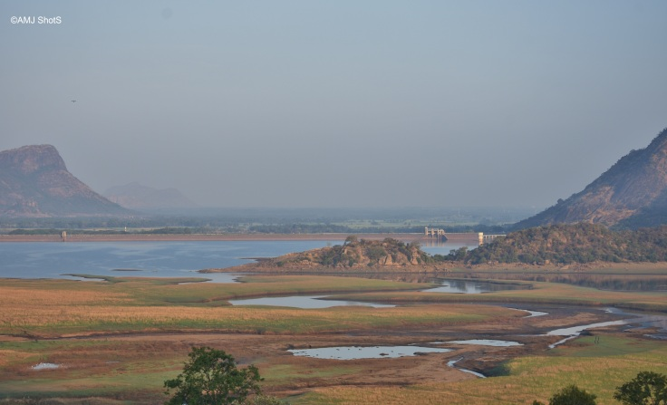 View of Palar Dam