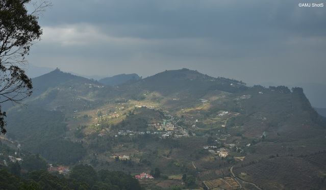 View from Coakers Walk - Kodaikanal