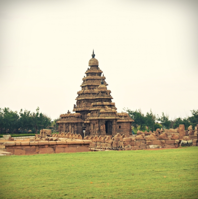 DSC_9197 - Filtered view of Shore temple.