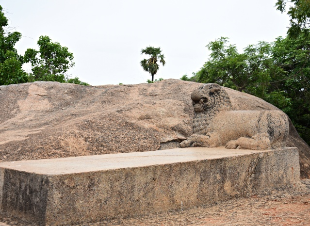 DSC_9485 - Dharmaraja's rock cut throne - a monolith rectangular seat with a carved out couchant lion at one end - found on the top of hill.