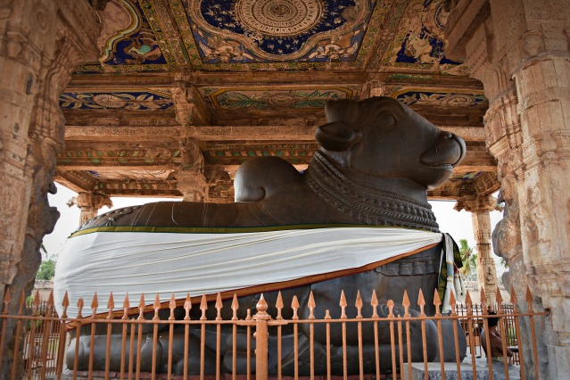 DSC_0283 - Nandi placed on 5ft high dias under 16 pillared canopy.Constructed by King Sevappa Nayaka and Achyuthappa Nayaka.