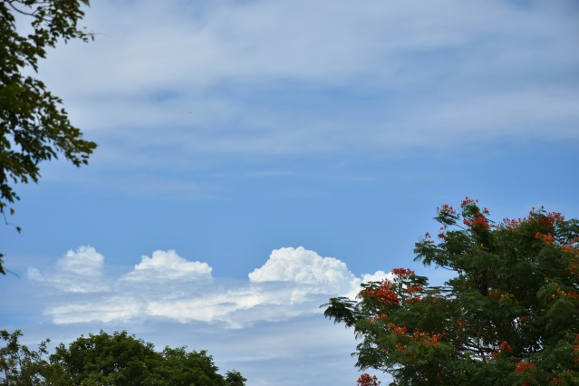DSC_0397 - View of blue sky and white puffy clouds during our visit to Thanjavur Maratta Palace.