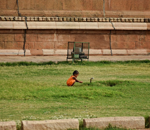 DSC_0492 - Another scene from north side of temple complex - A kid playing with his own Fantasies.