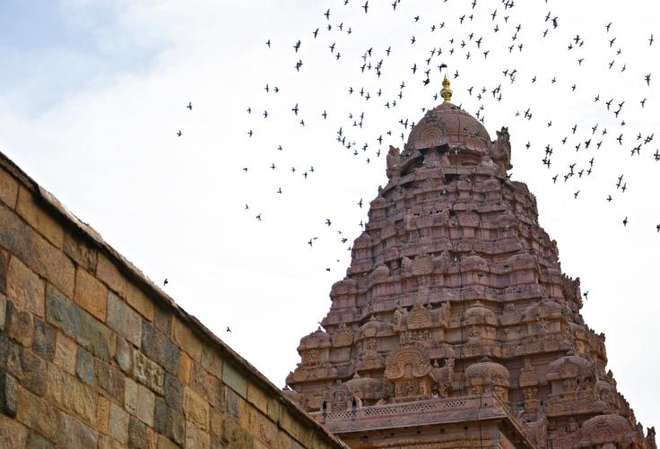 DSC_9853 - 9 Storey Vimana structure of Choleswaram.55 m high.