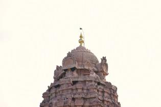 Shikhara of Gangaikondam Brihadisvara temple.