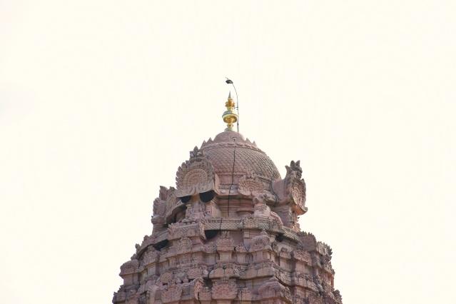 DSC_9886 - Shikhara of Brihadisvara temple, Gangaikondam.