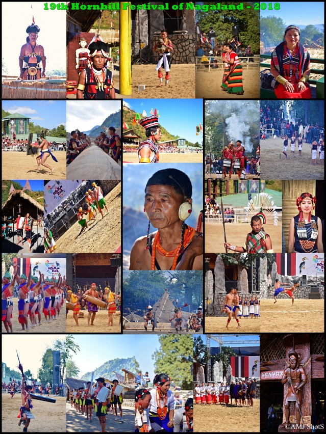 Hornbill Festival New Collage for Blog 1 Copy (2)